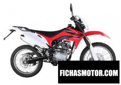 Ficha técnica Mikilon d92-125 2012