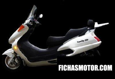 Ficha técnica Motom trancity 250 2009
