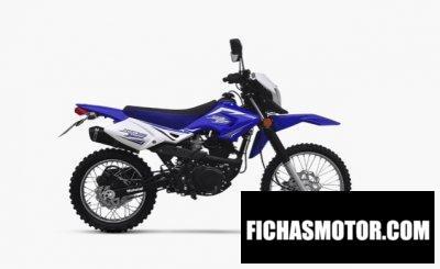 Ficha técnica Motomel Skua 125 Xtreme 2020