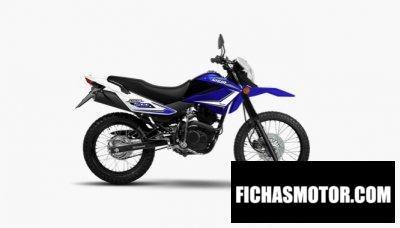 Ficha técnica Motomel Skua 200 V6 2020
