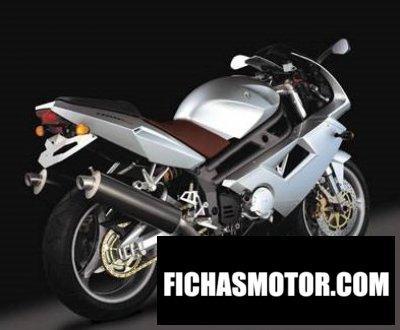 Ficha técnica Mz 1000 s 2008