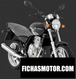 Imagen moto Mz rt 125 2005