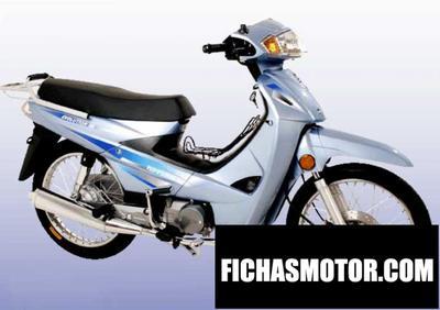Ficha técnica Nipponia evolution 110 2009