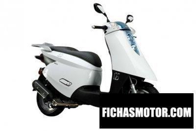 Ficha técnica Nipponia ezio 50 2016