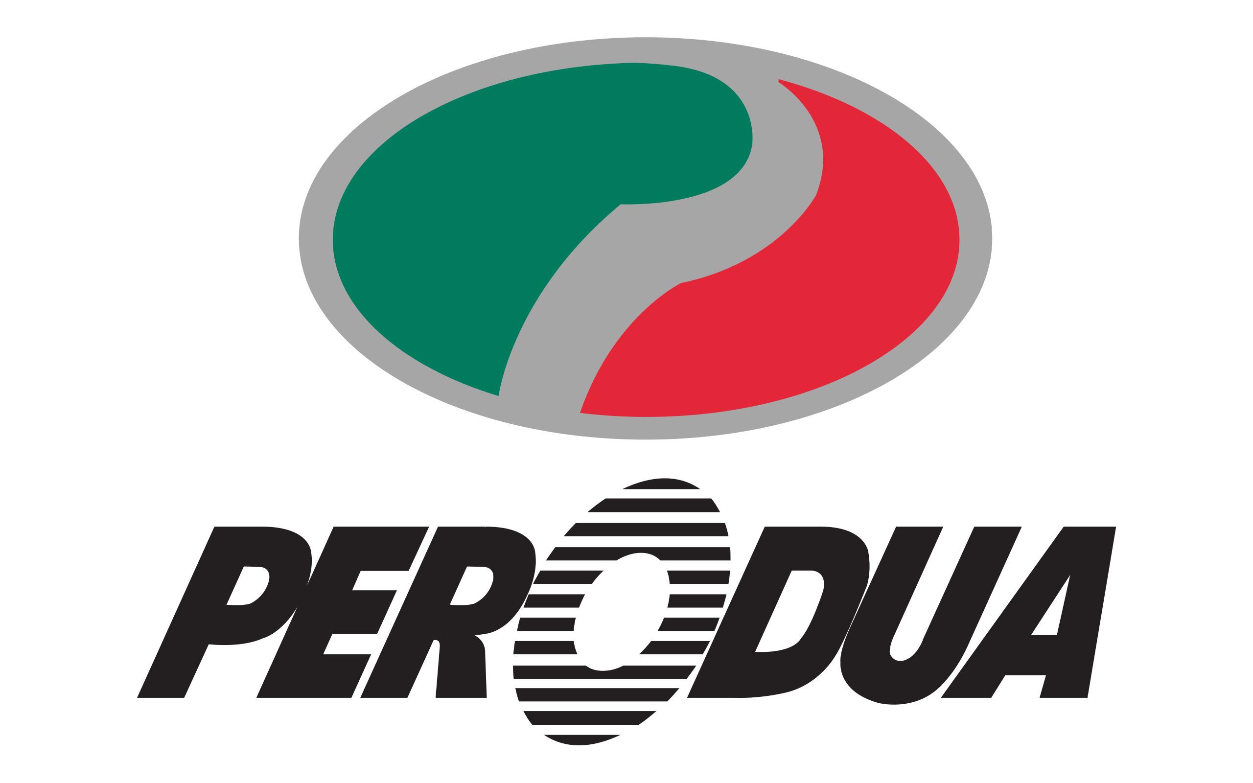 Imagen logo de Perodua