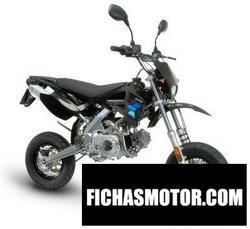 Imagen moto Polini xp 4 street 50 2010