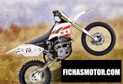 Imagen moto Qlink db 250 año 2012