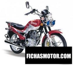 Imagen moto Sukida sk-125-6 patriot 2011