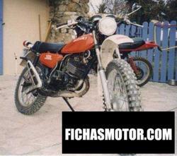 Imagen de Suzuki ts 125 año 1977