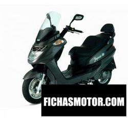 Imagen moto Sym joyride 125 (disk type) 2007