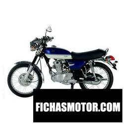 Imagen moto Sym wolf Classic 2012