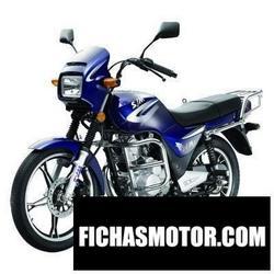Imagen moto Sym x-wolf 2010