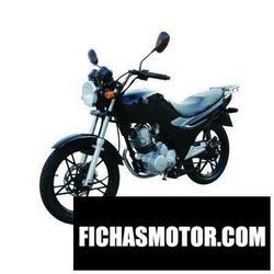 Imagen moto Sym xs125-k 2010