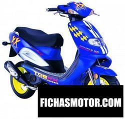 Imagen moto Tgb 303r 50 2006