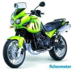 Imagen moto Triumph tiger 900 1999