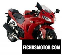 Imagen moto Veli vl250gs-5 2012