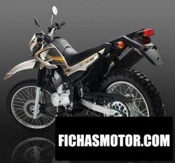 Imagen moto Vuka tm 200 2010