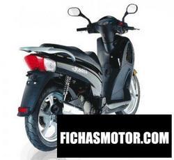 Imagen moto Wt motors jungle 125 2011