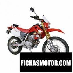 Imagen moto Xingyue xy250gy 2011
