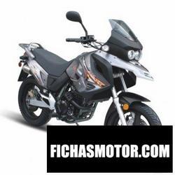 Imagen moto Xingyue xy400gy-2 2011