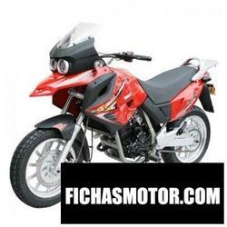 Imagen moto Xingyue xy400gy-2 2012