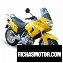 Imagen moto Xingyue xy400gy 2011