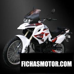 Imagen moto Xingyue xy400gy-3 2014