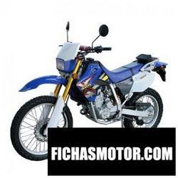 Imagen moto Xingyue xy400y 2011
