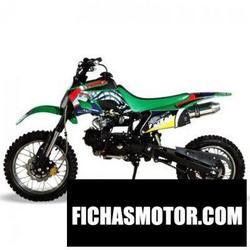 Imagen moto Xingyue xyqh-806w 2012