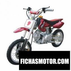 Imagen moto Xispa xyqh806-110 2008