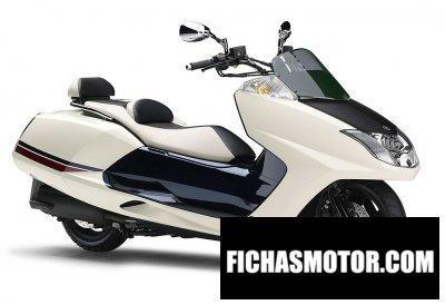 Ficha técnica Yamaha cp250 maxam 2011
