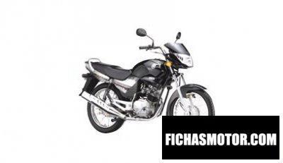 Ficha técnica Yamaha g5 2007