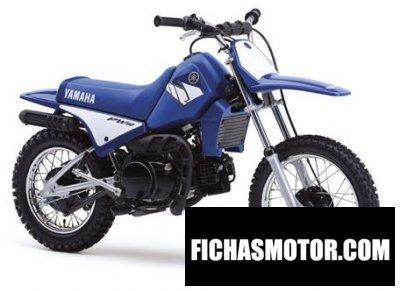 Imagen moto Yamaha pw 80 año 2004