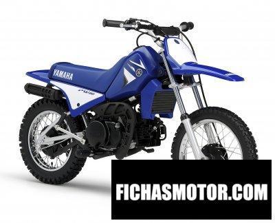 Ficha técnica Yamaha pw80 2008