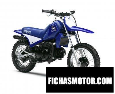 Ficha técnica Yamaha pw80 2011