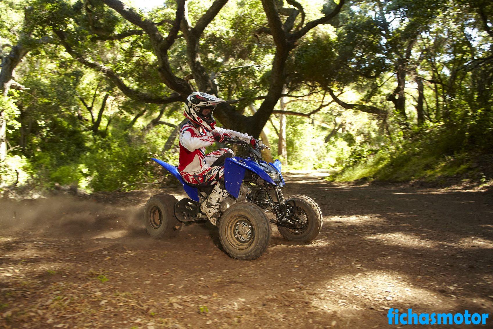 Ficha técnica Yamaha raptor 125 2011