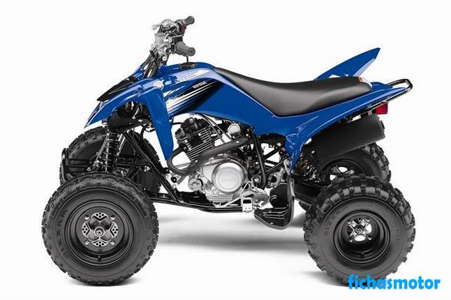 Ficha técnica Yamaha raptor 125 2012