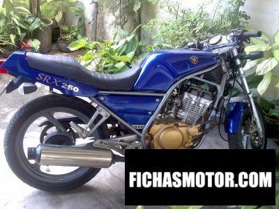 Imagen moto Yamaha srx 250 año 1987