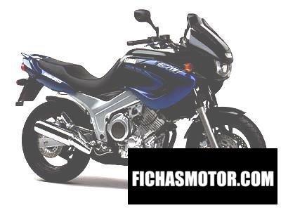 Imagen moto Yamaha tdm 850 año 1999