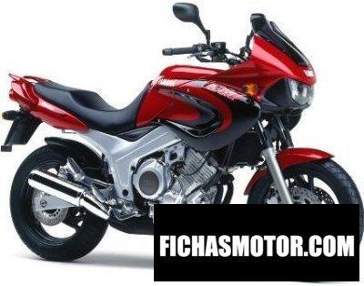 Ficha técnica Yamaha tdm 850 2000