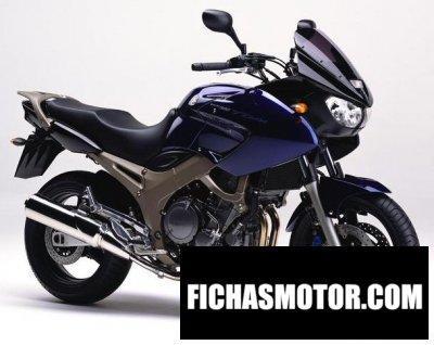 Ficha técnica Yamaha tdm 900 2003