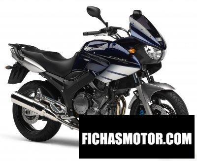 Ficha técnica Yamaha tdm 900 2006