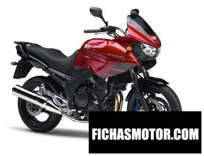 Imagen moto Yamaha tdm 900 año 2007