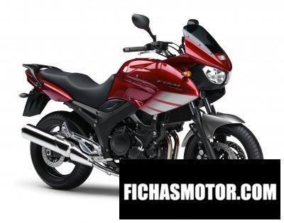 Imagen moto Yamaha tdm 900 año 2008