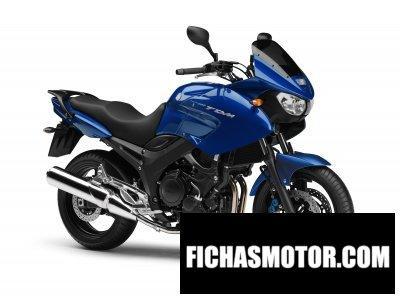 Ficha técnica Yamaha tdm 900 2009
