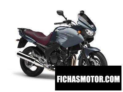 Imagen moto Yamaha tdm 900a año 2010