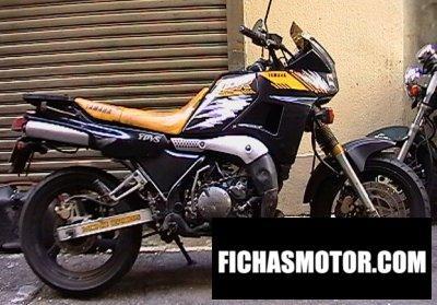 Ficha técnica Yamaha tdr 250 1990