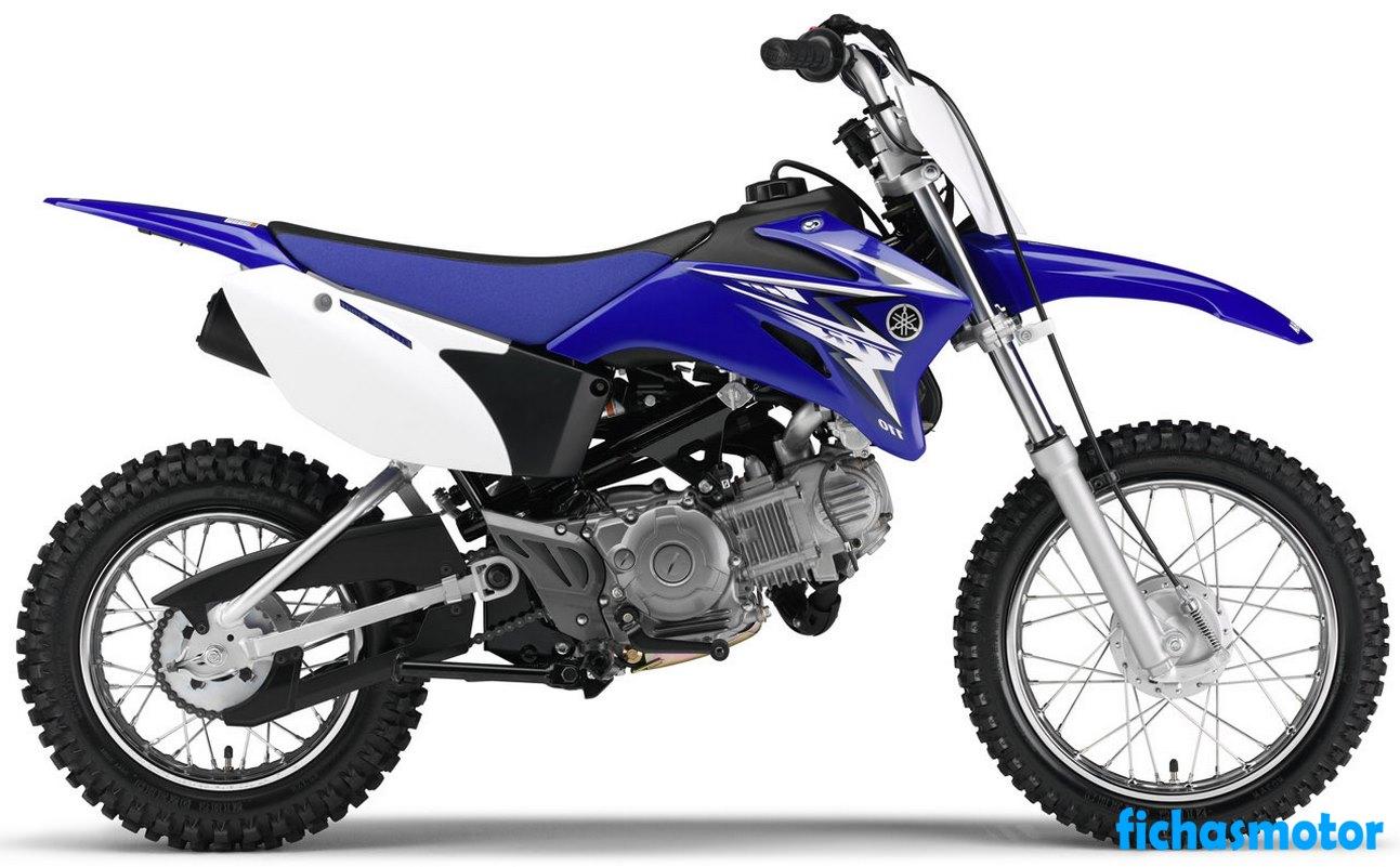 Ficha técnica Yamaha tt-r110e 2010