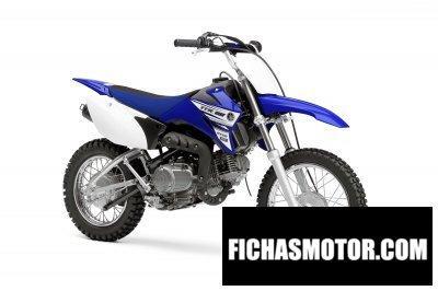 Ficha técnica Yamaha tt-r110e 2016