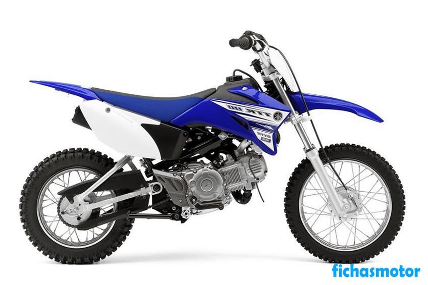 Ficha técnica Yamaha tt-r110e 2017